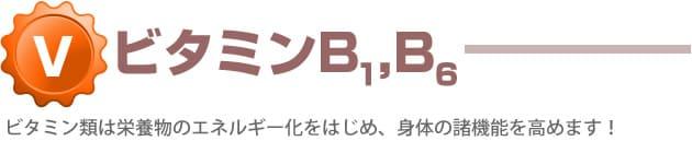 ビタミンB1,B6